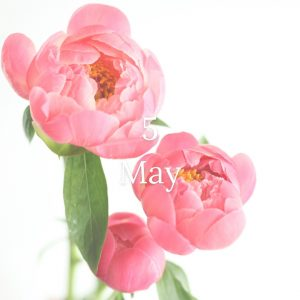 5月のお花