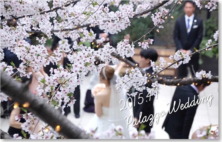 Sakura Wedding♪