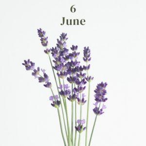 *・・6月のお花・・*