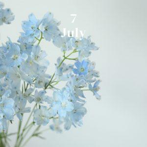 *・・7月のお花・・*
