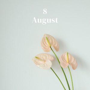 *・・8月のお花・・*