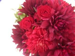 ♪9月のお花♪