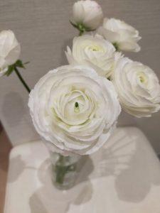春のお花のご紹介